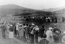 Horse Racing at the Meadow, wp800